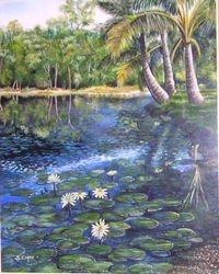 ' Cairns botanical garden'