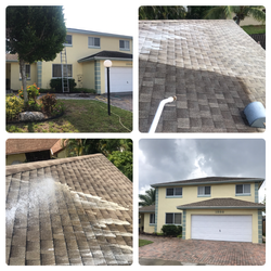 Shingle soft cleaning