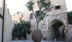 Suspension Tree