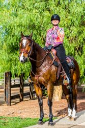"""2007 AQHA bay gelding sired by the spectacular """"RL Best of Sudden"""""""