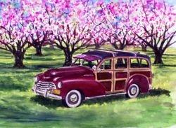 Burgundy Woodie in Pink Flowering Tree Orchard