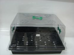 Propagation tray and lid
