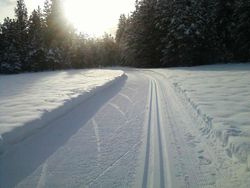 Cross Country Skiing Heaven