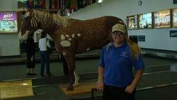 Arriving in Billings, Montana airport!