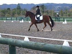 Erin Mortimer riding Windsor