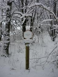 18. La balade des gens neigeux.
