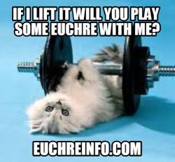 If I lift it will you play some Euchre with me?