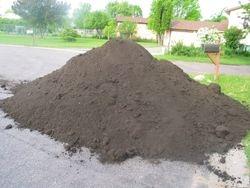 Before - Fresh Soil