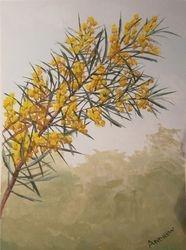 Wattle Bloom