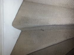 Stairs - during clean