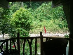 View from the Gecko Room balcony