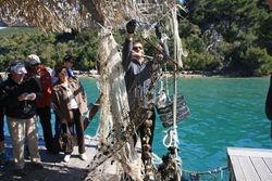 Oysters in Ston Croatia