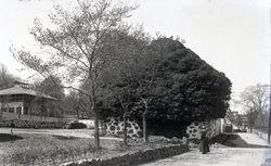 Hotell Arild (Rusthallargarden) 1915