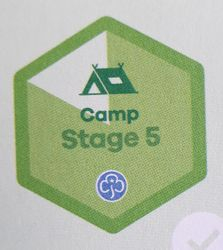 Camp Stage 5 Skill Builder