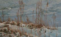 Winter 2013 ( A )