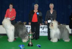Best In Show and Reserve Best In Show