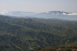 Tehahachapi Mts to left, Bear Mt to right (background)