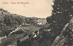 DJUPADAL 1907
