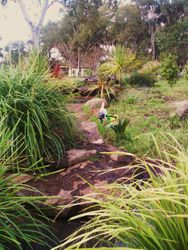 River front pond