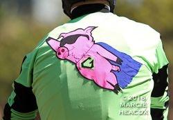 Flying Pig Silks