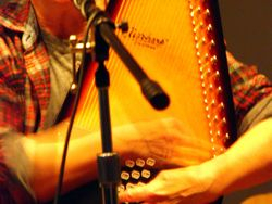 Autoharp and Hands