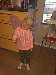 The prettiest butterfly!