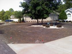 Before Bahia grass was installed