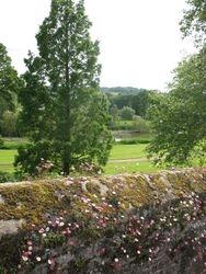 Powderham Castle, Devon - River View