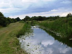 Wicken Lode