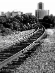 Follow The Tracks