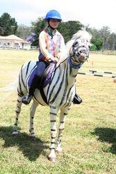 Peter the Zebra