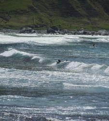 Hoddevik - surfing
