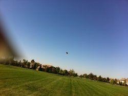 Afghan Kite Making a Presence