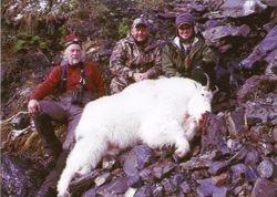 Jeff's Mountain Goat