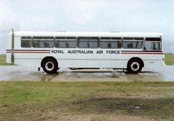 Bus Motor Pax 45 Seats