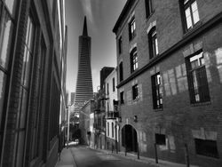 Telegraph Hill San Francisco