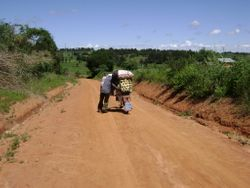 Moving a heavy load to market on a bicycle