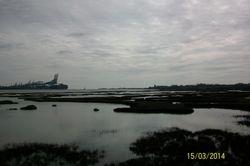 River Orwell & Felixstowe Docks