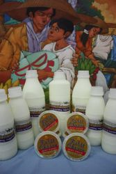 First Choice Dairy Products
