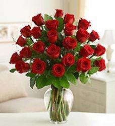 2 dozen of roses