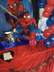 SPIDERMAN PARTY THEME SET UP