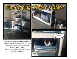 Where's Dale?