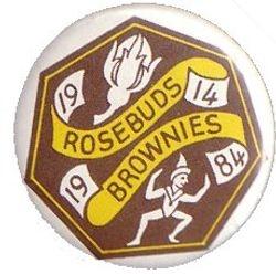 1984 Brownie Anniverary Pin Badge