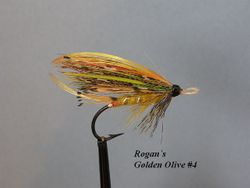 Rogan`s Golden Olive