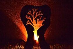 Tree Sillouette