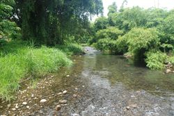 One of the many pretty rivers in Grenada