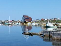 View of Bonavista harbour from Ryan Premises