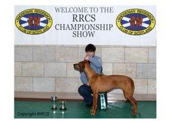 Best Veteran Nov 2010