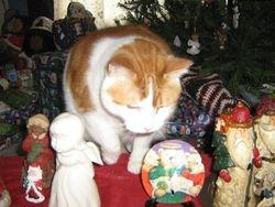 Elvis chooses his presents