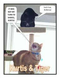 Kurtis and Tiger